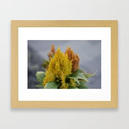 The Growing Flame Framed Art Print