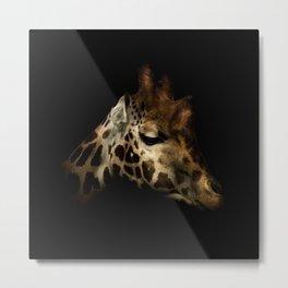 Rothschilds Giraffe Portrait Metal Print