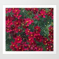 Little Red Flowers Art Print
