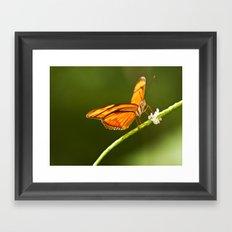 Flamed Butterfly Framed Art Print