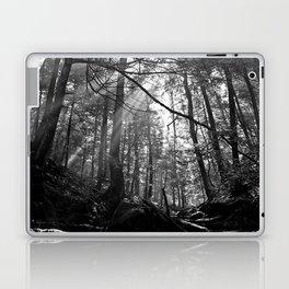 Sunrays Through the Trees Laptop & iPad Skin