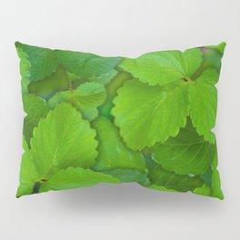 Holy Basil Tulsi Green Mint Leaves Pillow Sham