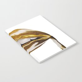 Golden Lips Notebook