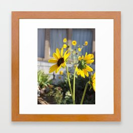 Garden gals Framed Art Print