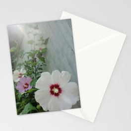 Morning Mist Hibiscus Flowers Stationery Cards