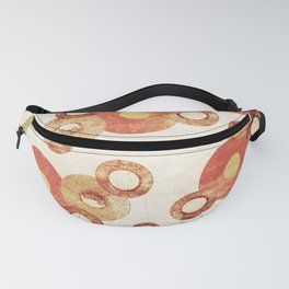 The past age of vinyl records. Fanny Pack