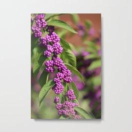 Purple Polka Dot Candy Metal Print