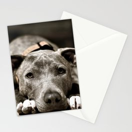 blue dog Stationery Cards