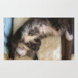 Free Fall Kitty Rug