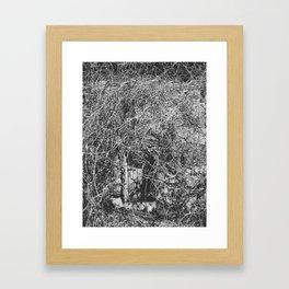 Briar II Framed Art Print