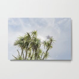 Cornish Palms Metal Print