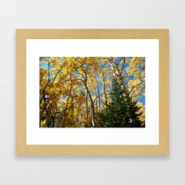 Nor Wind To Blow Framed Art Print
