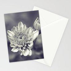 Indulgence (Monochrome) Stationery Cards
