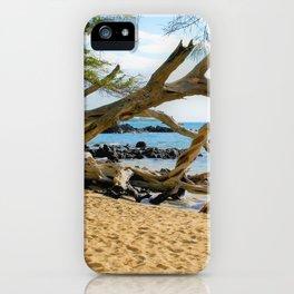 Hawaiian Shoreline by Reay of Light iPhone Case