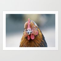 Poule Art Print