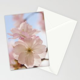 Sping blossom Stationery Cards
