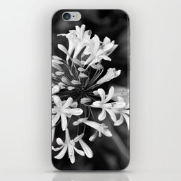 Lily of the Nile iPhone Skin