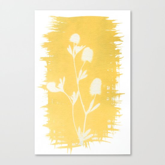 Herbal Sunprint #6 Canvas Print