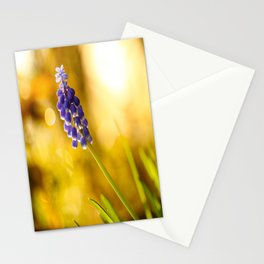 Beautiful Spring Muscari Bokeh background  #decor #society6 #homedecor Stationery Cards