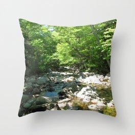 Watercolor Landscape, Cape Breton 22, Nova Scotia, Canada Throw Pillow