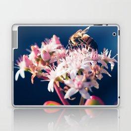 Crassula ovata Jade Flowers and Honey Bee Kula Maui Hawaii Laptop & iPad Skin