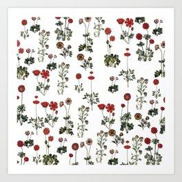 Simple Red Flowers Art Print