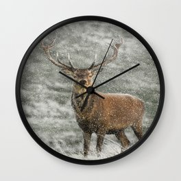 Red Deer Stag in Snow Wall Clock