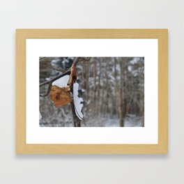 WinterColors Framed Art Print