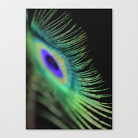 peacock feather Canvas Prints featuring Peacock feather by Falko Follert Art-FF77