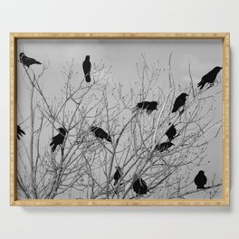 Murder Of Crows - Five Serving Tray