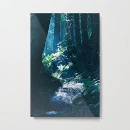 Through the dark forest Metal Print