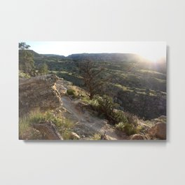 Evening Trail 2 Metal Print