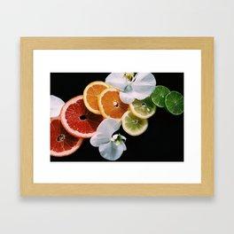 Rainbow of Citrus Framed Art Print