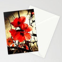 Spring Red 3, Royal Botanical Gardens - Melbourne Stationery Cards
