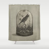 surrealism Shower Curtains featuring The Curiosity  by Terry Fan