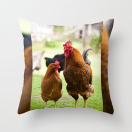 young Rhode Island Red chickens Throw Pillow