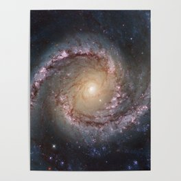 Intermediate Spiral Galaxy NGC 1566 Poster