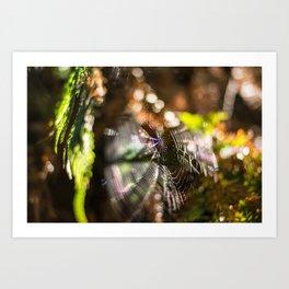 Spiderweb bokeh Art Print