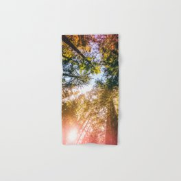 California Redwoods Sun-rays and Sky Hand & Bath Towel