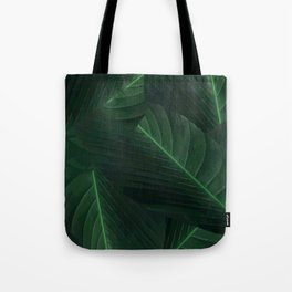 Banana palm greens tropical forest Tote Bag