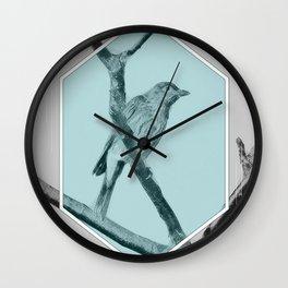Juvenile Figbird Wall Clock