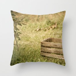 apple crate photograph Throw Pillow