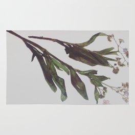 Flowing Lovely Floral Rug
