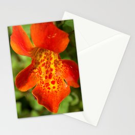 Orange spotted wildflower 97 Stationery Cards