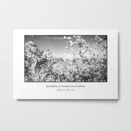 Springtime in Grabow Metal Print