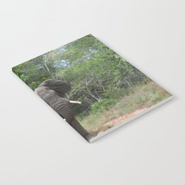 African Elephant Notebook