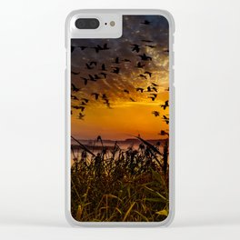 flying birds in the sky with sunset view Clear iPhone Case