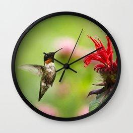 Hummingbird XVII Wall Clock