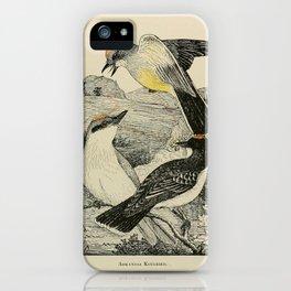 Arkansas Kingbird Gray Kingbird Kingbird9 iPhone Case