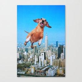 Woooo Canvas Print
